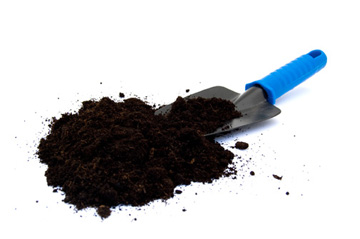 Photo of hand scoop filled with black compost