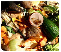 Photo of fruit and vegetable scraps